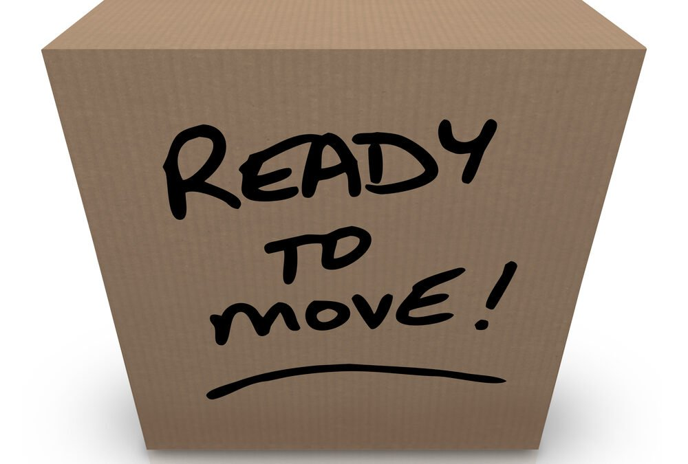 15 Essential Items for Moving Day